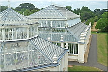 TQ1876 : At the Temperate House by Anthony O'Neil