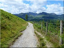 NY2725 : The descent from Latrigg [9] by Michael Dibb