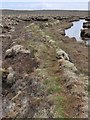 NB4655 : Stone and turf dyke, Malagro, Isle of Lewis by Claire Pegrum