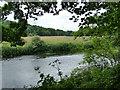 SE2137 : River Aire near Rawdon by Stephen Craven