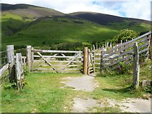 NY2725 : The descent from Latrigg [11] by Michael Dibb