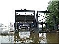 SJ6475 : Anderton boat lift - aqueduct by Stephen Craven