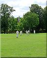 TL6669 : Chippenham Park: a tickle to leg by John Sutton
