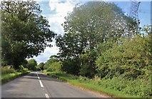 TL3930 : Biggin Hill north of Hare Street by David Howard