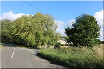 TL4440 : Heydon Lane, Chrishall by David Howard