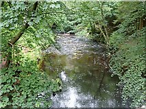 J3532 : The Shimna River below Ivy Bridge at Tollymore Park by Eric Jones