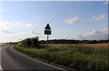 TL4438 : Hall Lane, Chrishall by David Howard