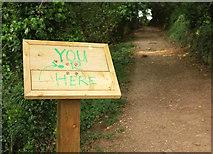 SX9364 : You R Here, Bishops Walk by Derek Harper