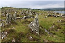 NR6880 : Rock Formations and stone dyke on Rubha na Cille by Alan Reid