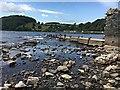 NY4624 : Ullswater slipway by Graham Hogg