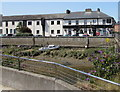 SS5533 : Inn on a riverbank, Barnstaple by Jaggery