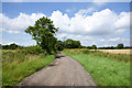 NZ3627 : Byway and access road for Neasless Farm by Trevor Littlewood