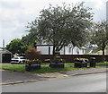 ST3490 : Caerleon in Bloom flower tubs, Tram Road, Caerleon by Jaggery
