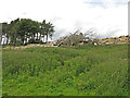 NY9149 : All that now remains of the lodge at Riddlehamhope (3) by Mike Quinn