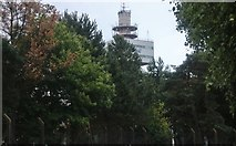 TM2444 : BT Tower, Adastral Research Park, Martlesham Heath by David Howard