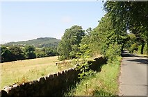 J0813 : The R174 north of the entrance to Ravensdale Equestrian Lodge by Eric Jones