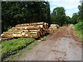 SO7477 : Timber in the Wyre Forest by Philip Halling