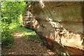 SO7699 : Sandstone cliff, Badger Dingle by Derek Harper