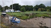 SO6501 : Lydney Yacht Club by Helen Steed