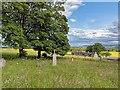 NH6671 : Graveyard at Nonikiln by valenta