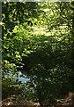 SO5376 : Ledwyche Brook by Derek Harper