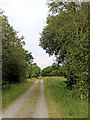 SN7064 : Former railway trackbed north-west of Tregaron, Ceredigion by Roger  Kidd