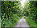 SN7063 : Ystwyth Trail near Swyddffynnon in Ceredigion by Roger  Kidd