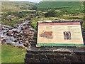 SN8023 : Fforest Fawr Geopark information board by Alan Hughes