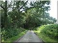 SK1521 : Thatchmoor Lane alongside Foxholes Covert by Christine Johnstone