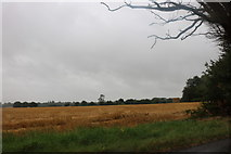 TM1059 : Field by the A1120, Forward Green by David Howard