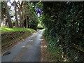 TG1617 : Bilney Lane, Felthorpe by Adrian Cable