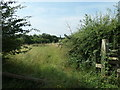 SK1520 : Public footpath along the western edge of White Wood by Christine Johnstone