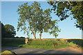 SO5376 : B4364 at Middleton by Derek Harper