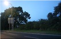 TA1667 : Bessingby Hill, Bridlington by David Howard