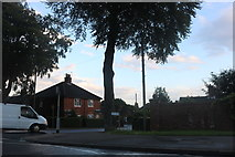 SK9971 : Tower Gardens at the junction of Greetwell Road by David Howard