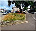 ST3089 : Flowerbed alongside Malpas Road, Crindau, Newport by Jaggery