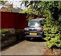 ST3090 : Nearly SO SAD in Pillmawr Road, Malpas, Newport by Jaggery