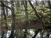 NM4339 : Ulva's reservoir by Richard Webb