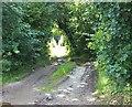 NX4546 : Tacher Bridge by Jon Alexander