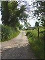 NY6715 : Farm road by Haybanks Farm by Oliver Dixon