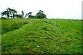 SO2774 : Offa's Dyke near Skyborry Green by Jeff Buck