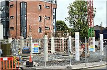 J3674 : No 98 Holywood Road, Belfast (August 2019) by Albert Bridge