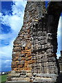 NZ9011 : Whitby Abbey: erosion by Stephen Craven