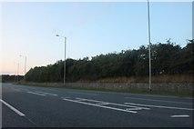 TA0233 : The A164, Skidby by David Howard