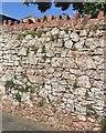 SX9073 : Sandstone rubble wall by Footpath No.19, Bishopsteignton by Robin Stott