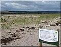 NU1535 : Shorebird nesting area by Russel Wills