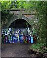 TQ3472 : Crescent Wood Tunnel by Ian Taylor