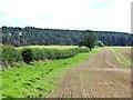NZ0060 : Field below Hemmels Fell by Oliver Dixon