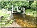 NZ0061 : Footbridge on Ridingmill Burn by Oliver Dixon