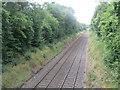 TQ1148 : North Downs Line, near Dorking by Malc McDonald